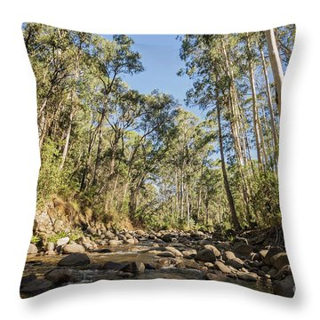 Throw Pillow featuring the photograph Reaching Skyward by Linda Lees