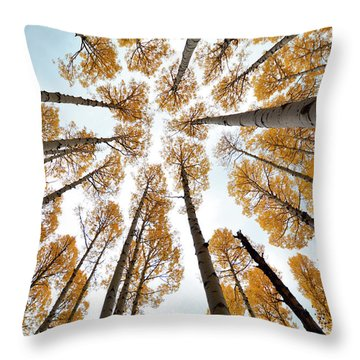 Reaching The Sky Throw Pillow