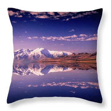Reacting To The Morning Light Throw Pillow