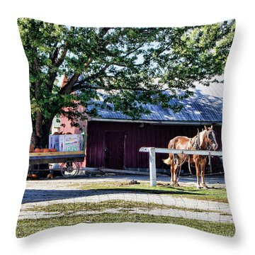 Throw Pillow featuring the photograph Ready And Waiting by Cricket Hackmann