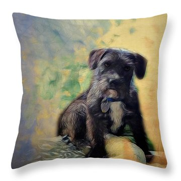 Ready For A Nap Throw Pillow by Ann Powell