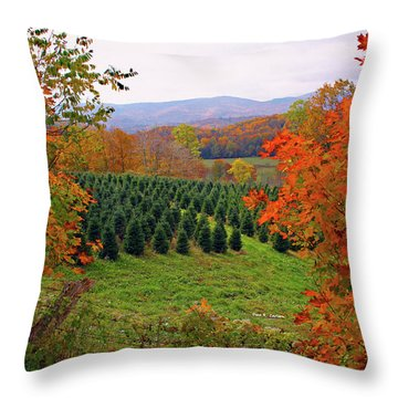 Ready For Christmas Throw Pillow by Dale R Carlson