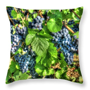 Throw Pillow featuring the photograph Ready For Harvest by Alan Toepfer