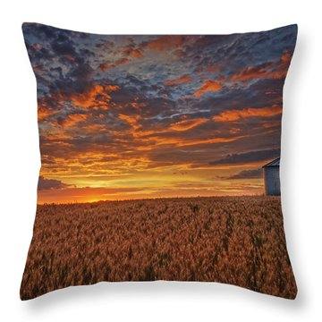 Ready For Harvest Throw Pillow