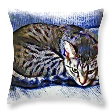 Ready For Napping Throw Pillow by David G Paul