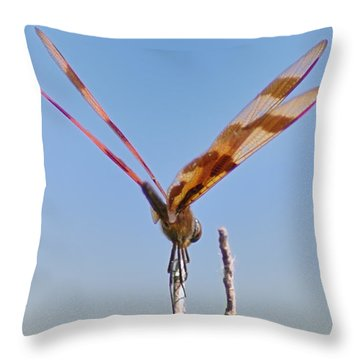 Ready For Take Off Throw Pillow by Bill Cannon