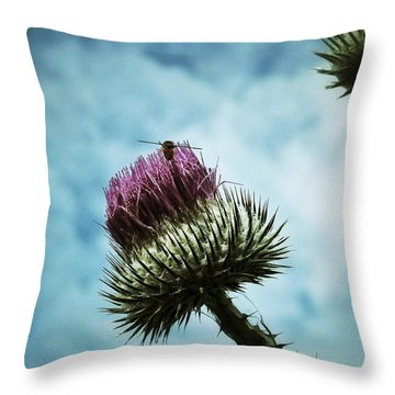 Throw Pillow featuring the photograph Ready For Take-off by Karen Stahlros