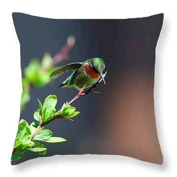 Throw Pillow featuring the photograph Ready For Take-off by Sandra Updyke