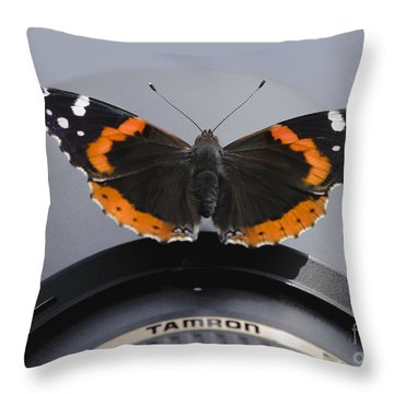Ready For Takeoff Throw Pillow by Andrea Silies