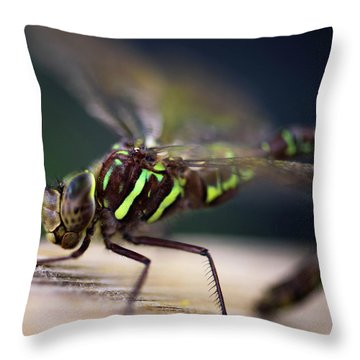Ready For Takeoff Throw Pillow by Sherman Perry