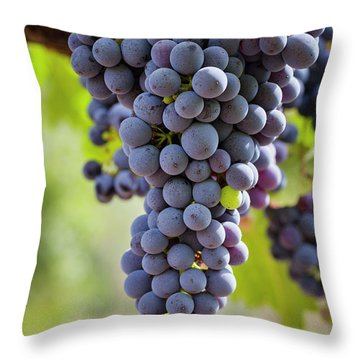 Ready For The Crush Throw Pillow