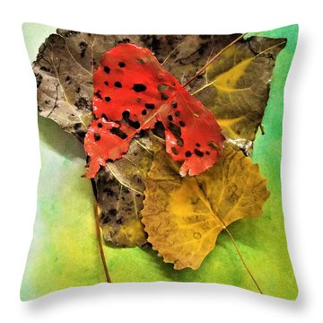 Ready For The Pile  Throw Pillow