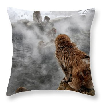 Ready For The Plunge Throw Pillow