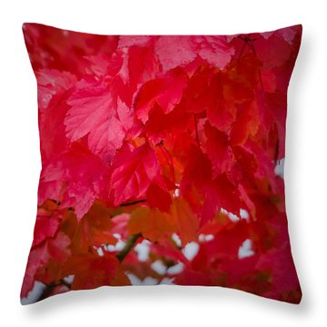 Ready To Fall Throw Pillow