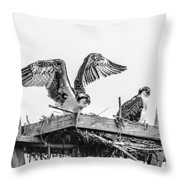 Ready To Fly Bw Throw Pillow