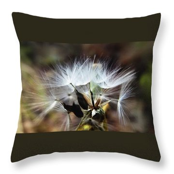 Ready To Fly... Salsify Seeds Throw Pillow