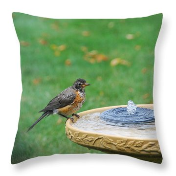 Ready To Jump In Throw Pillow