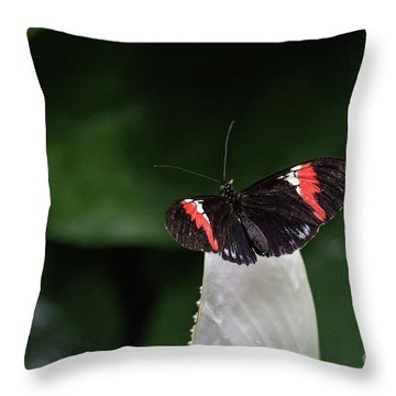 Ready To Launch Throw Pillow