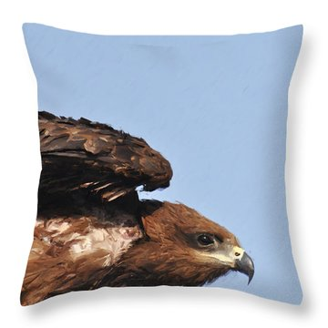 Ready To Take Off Throw Pillow