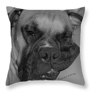 Really Comfy Throw Pillow by DigiArt Diaries by Vicky B Fuller