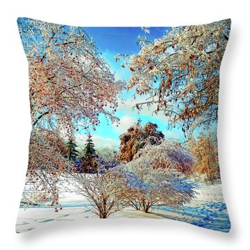 Throw Pillow featuring the photograph Realm Of The Ice Queen by Rodney Campbell
