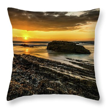Throw Pillow featuring the photograph Receding Tide by Nick Bywater