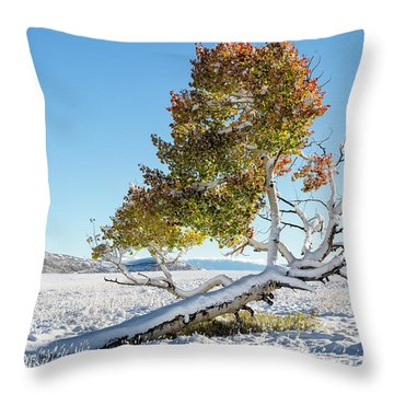 Reclining Tree With Snow Throw Pillow