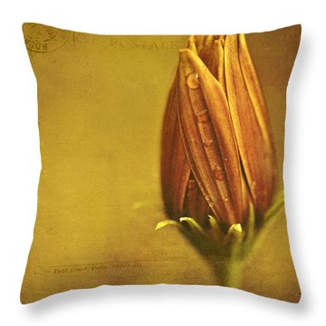 Recollection Throw Pillow by Bonnie Bruno