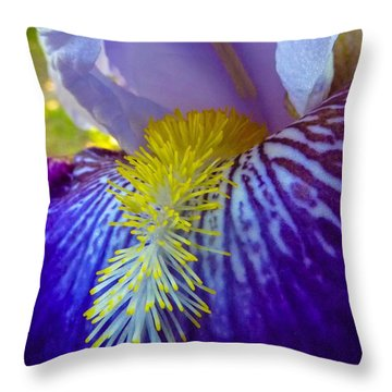 Recollection Spring 1 Throw Pillow