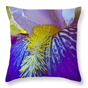 Recollection Spring 3 Throw Pillow