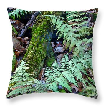 Throw Pillow featuring the photograph Record Warmth by Betsy Zimmerli