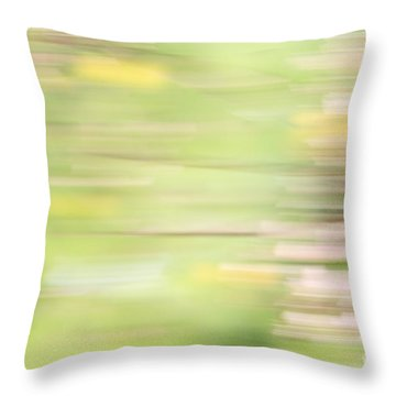 Rectangulism - S04a Throw Pillow by Variance Collections