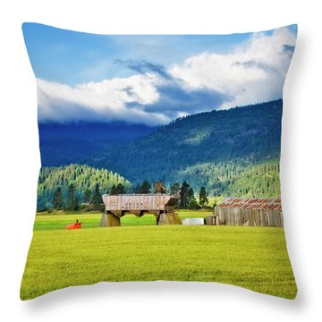 Throw Pillow featuring the photograph Recycled by Albert Seger