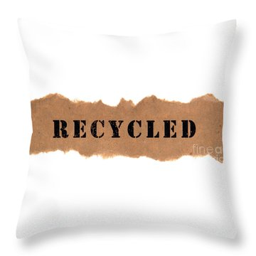 Recycled Throw Pillow by Olivier Le Queinec