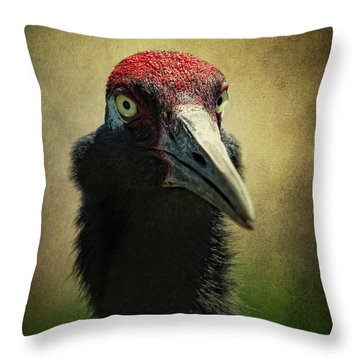 Red - Crowned Crane 1 Throw Pillow