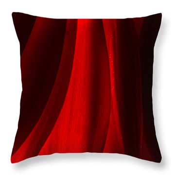 Red Abstract Of Chrysanthemum Wildflower Throw Pillow