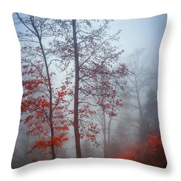 Throw Pillow featuring the photograph Red And Blue by Elena Elisseeva
