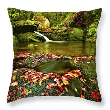 Red And Green Throw Pillow by Jorge Maia
