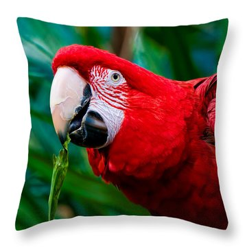 Red And Green Macaw Throw Pillow