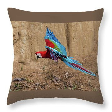 Red-and-green Macaw Throw Pillow