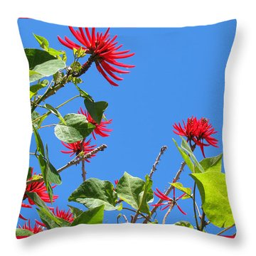 Red And Green San Diego Flowers Throw Pillow by Doreen Whitelock