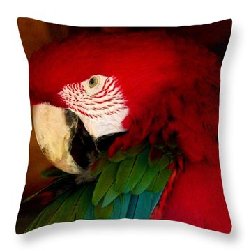 Red And Green Wing Macaw Throw Pillow