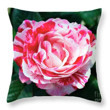 Red And Pink Floral Candy Rose Garden 490 Throw Pillow