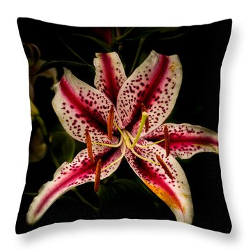 Throw Pillow featuring the photograph Red And White Lily by Jay Stockhaus