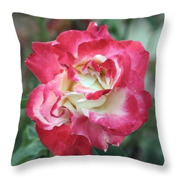 Red And White Rose Throw Pillow