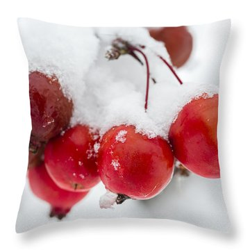 Throw Pillow featuring the photograph Red And White by Sebastian Musial
