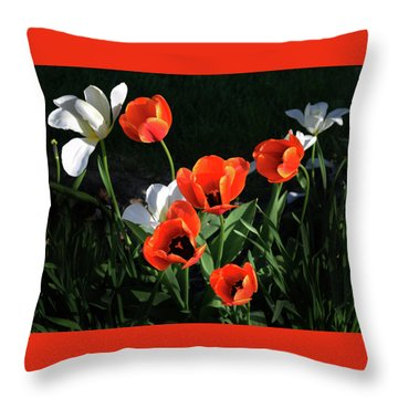 Red And White Tulips Throw Pillow by Kathleen Stephens