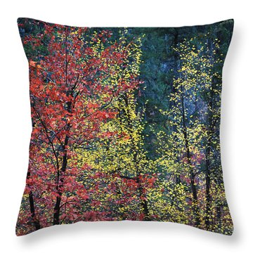 Red And Yellow Leaves Abstract Horizontal Number 1 Throw Pillow by Heather Kirk