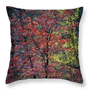 Red And Yellow Leaves Abstract Vertical Number 1 Throw Pillow by Heather Kirk