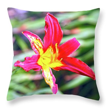 Red And Yellow Orchid Throw Pillow